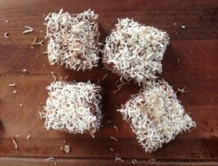 Sugar-free Lamingtons