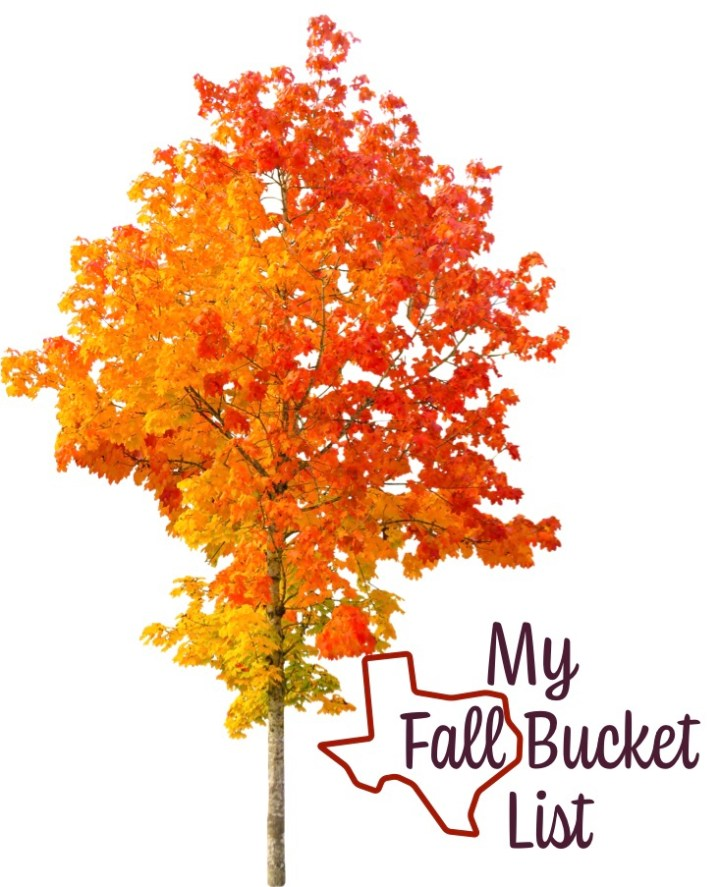 My Texas Fall Bucket List