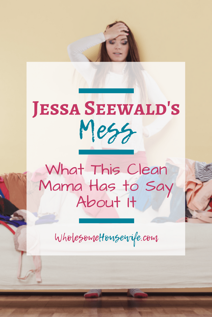 Jessa Seewald's Mess - What This Clean Mama Has to Say About It