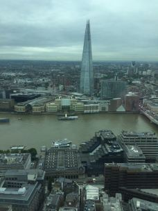 The Shard From The Sky Garden.