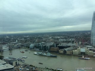 The view from the lower deck of The Sky Garden.
