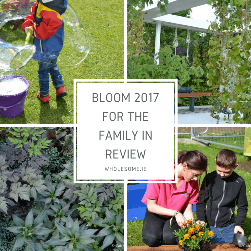 Bloom 2017 For The Family In Review