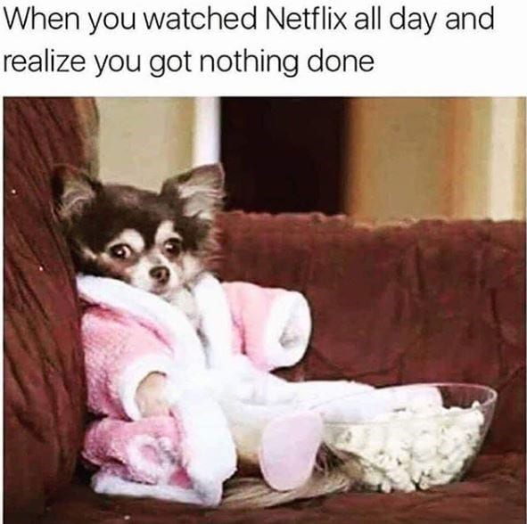 Chihuahua in a robe and slippers with popcorn on the couch.