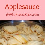 Home Made Applesauce – Falls Best Treat!