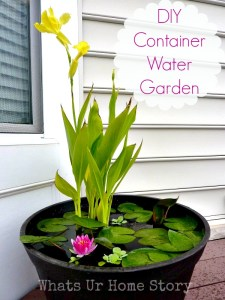 DIY Water Garden-Whats Ur Home Story