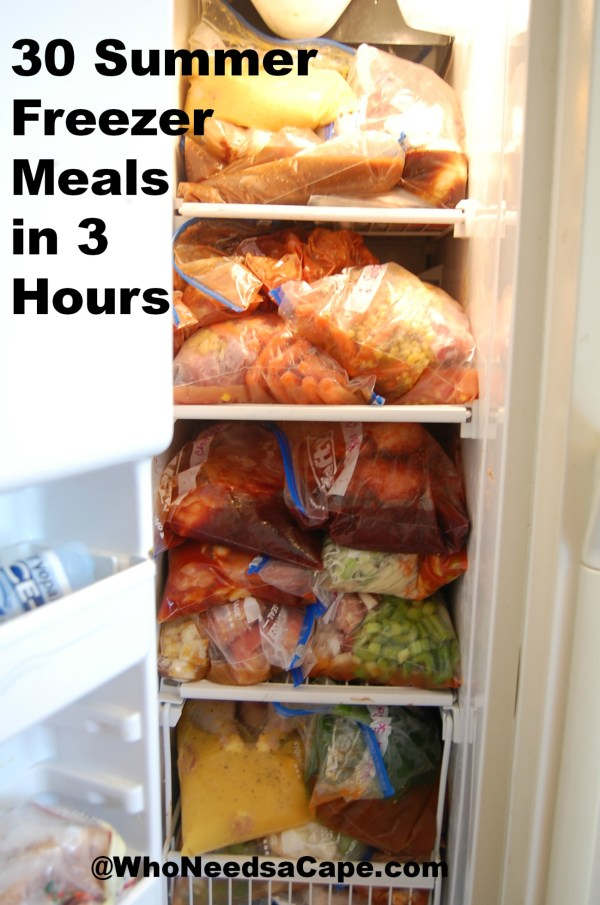 30 Summer Freezer Meals in 3 Hours | Who Needs A Cape?