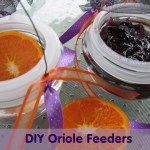 DIY Oriole Feeders