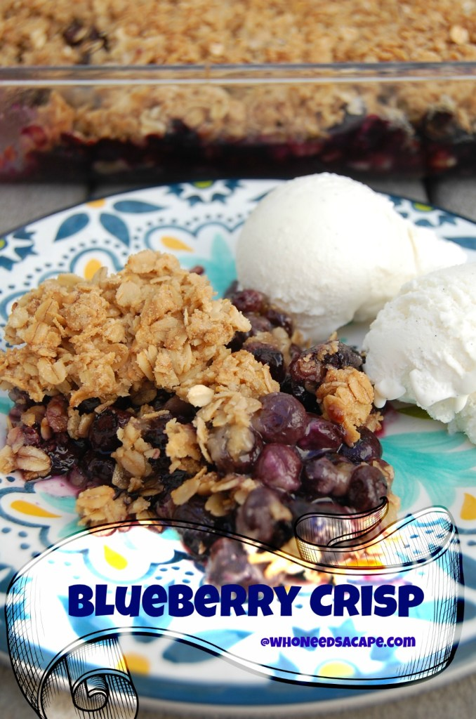 Blueberry Crisp is a delish way to celebrate blueberry season. Use your fresh berries in this fabulous dessert! Easy and quick dessert
