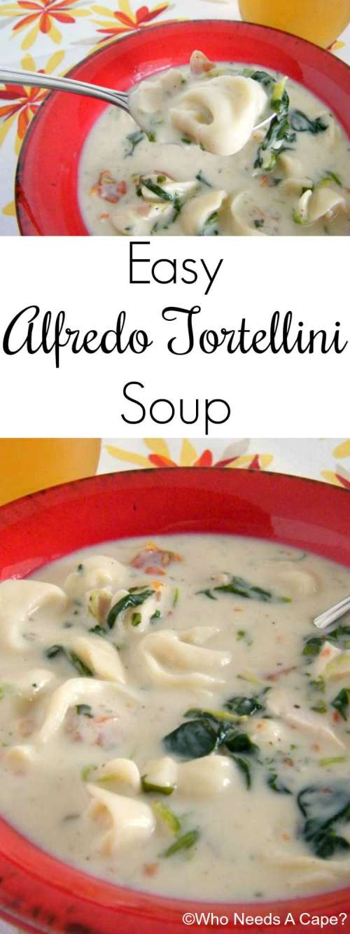 This Easy Alfredo Tortellini Soup, is just fabulous for dinner in a hurry. All the flavors of alfredo that you love with the ease of a quick soup.