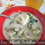 Easy Alfredo Tortellini Soup