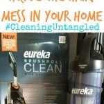 Tackle the Hairy Mess in Your Home
