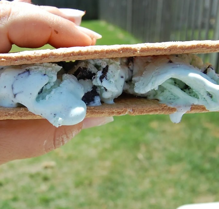 Easy Ice Cream Sandwich 4