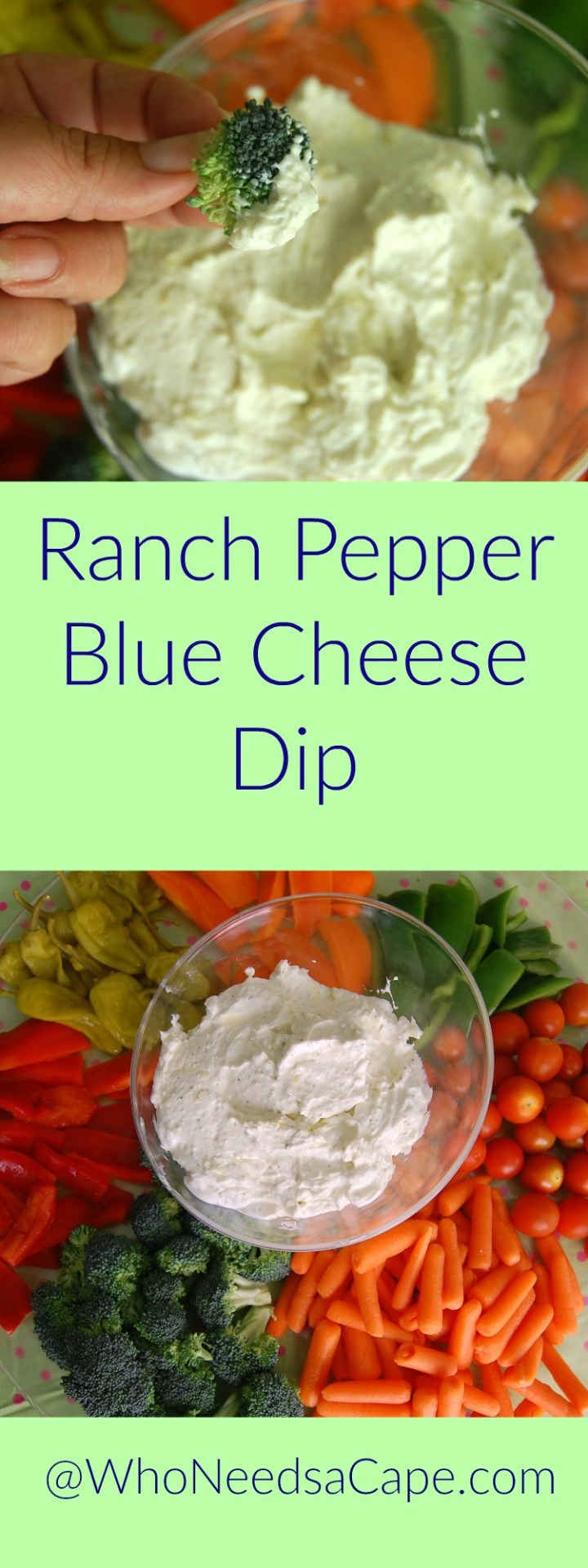Ranch Pepper Blue Cheese Dip puts all other dips to shame. Use it for any veggie and even on a cracker - great and easy!
