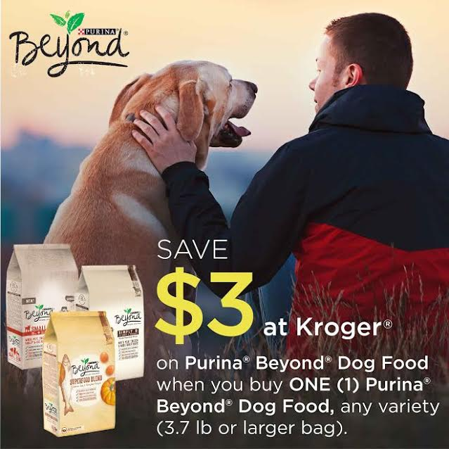 purinabeyondimage