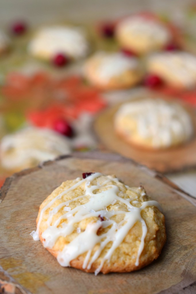 Cranberry White Chocolate Chip Drop Cookies Who Needs A Cape