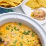 Slow Cooker Fiesta Bean Dip