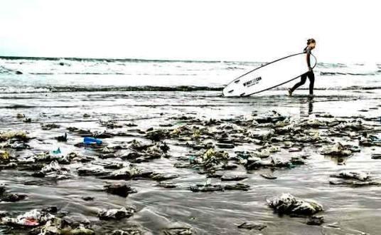 Adidas, to Turn Ocean Plastic Into Sportswear