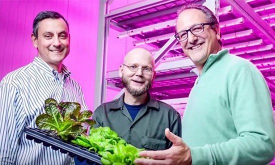 Indoor Farms: The Future of Agriculture?