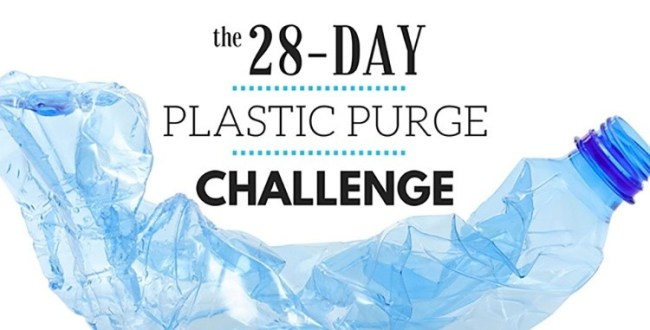Plastic Purge Challenge In 28 Days