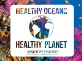 World Oceans Day: Healthy Oceans, Healthy Planet