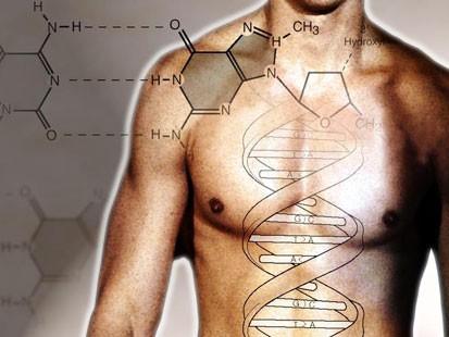 genome-567