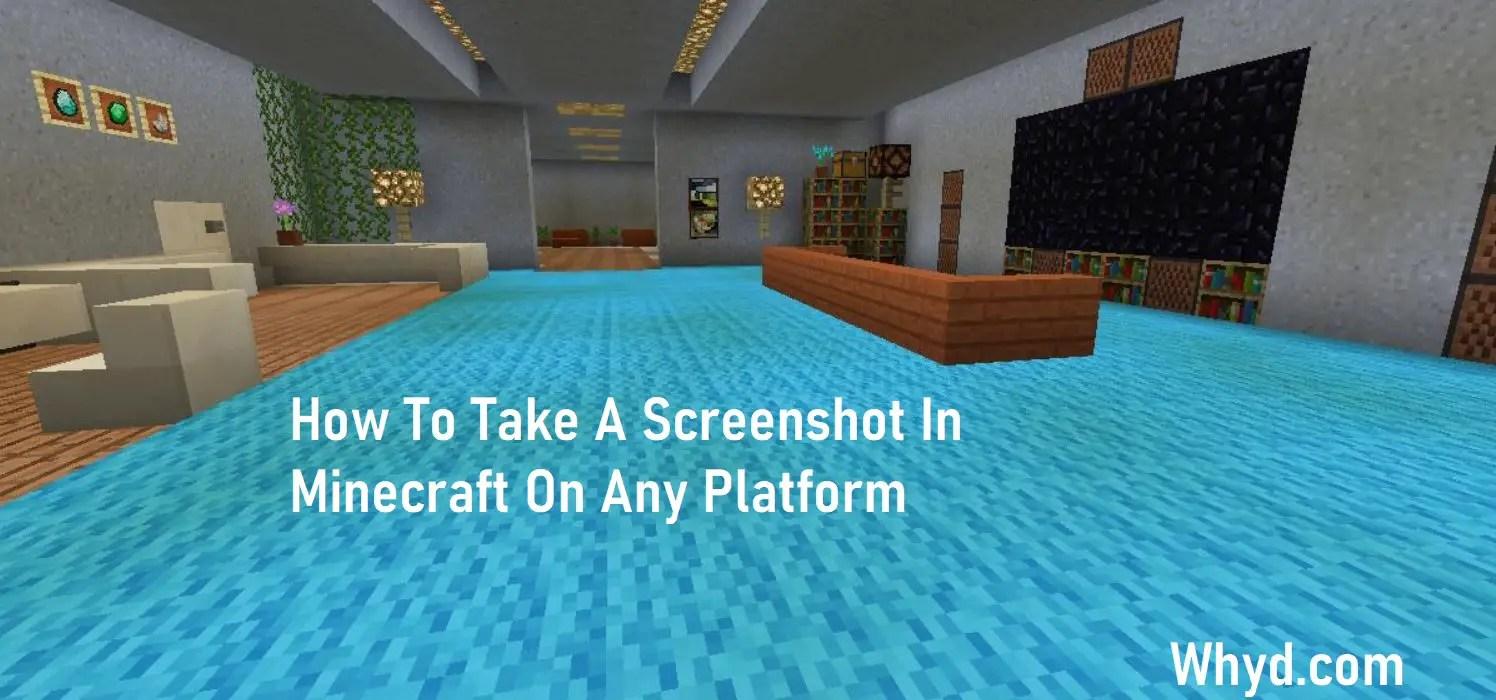 Screenshot In Minecraft On Any Platform