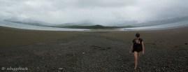 Playa Uvita - Whale Tale