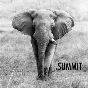 summit-2015-theme-square