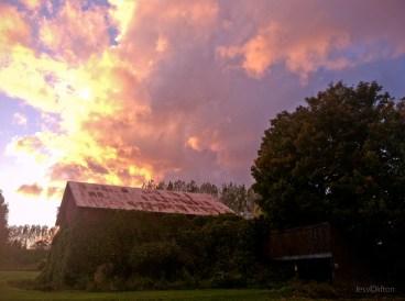swaney_barn_old_mission_peninsula