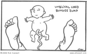 Umbilical Cord Bungee Jump (Credit: Rob Caswell)