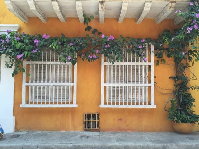 A Street in Cartagena with Bougainvillea - Things to do in Cartagena