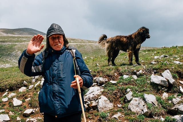A Local Shepherd in Bosnia - Driving in Bosnia