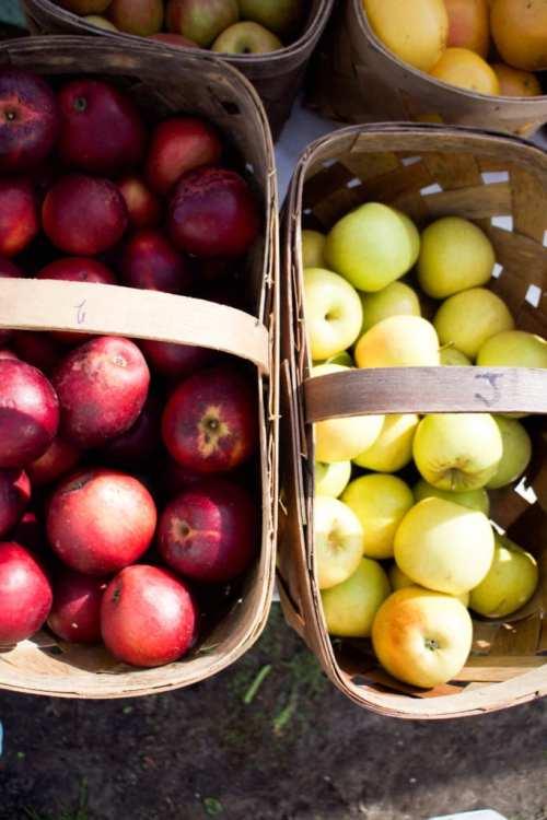 Fresh fruit at the Amelia Island Farmer's Market - Cooking Class on Amelia Island