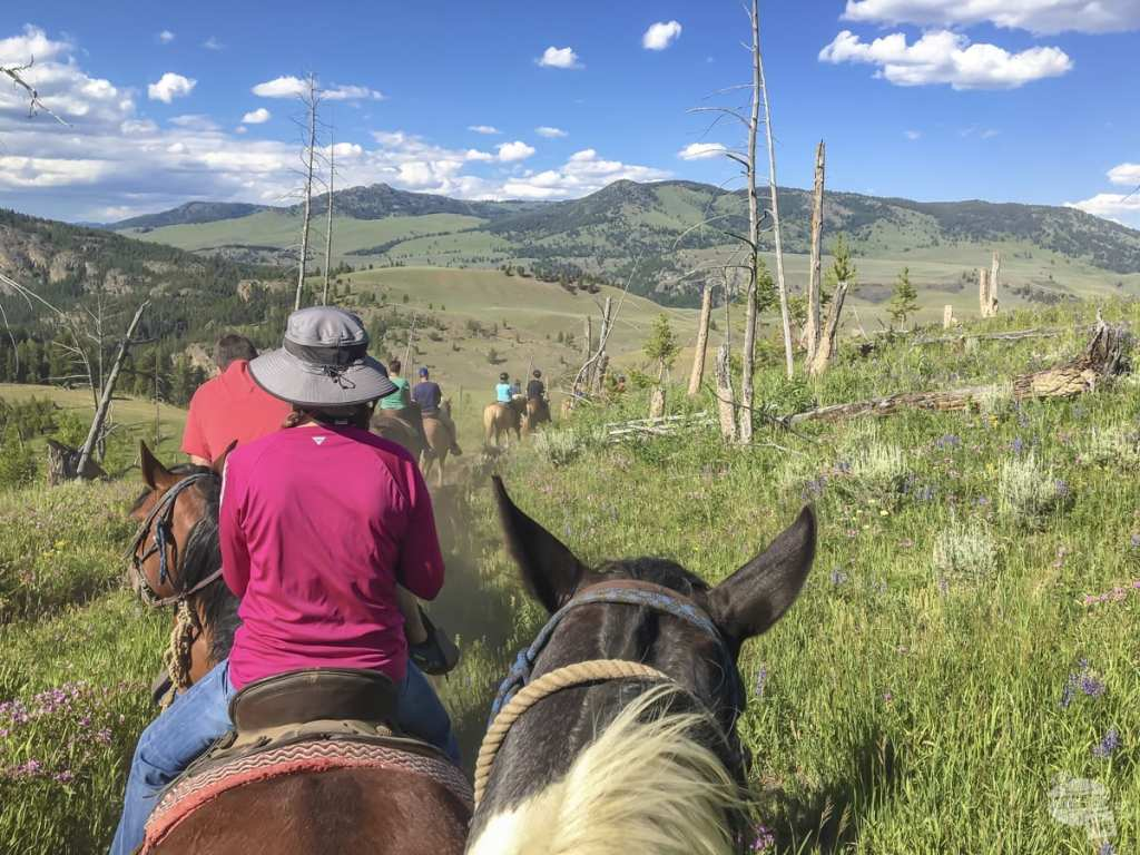 Horseback Riding in Yellowstone National Park - A 7 Week RV Trip in the American West