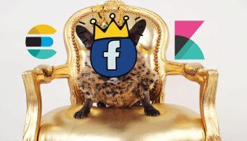elasticsearch-runtime-fields-facebook-data-leak