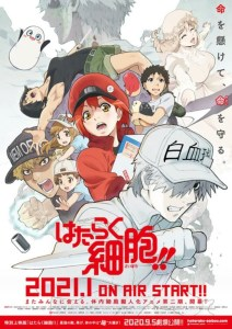 Anime TV Cells at Work!! Pada Bulan Januari 2021 Dicantumkan Sebagai Adaptasi Dari Code Black 3