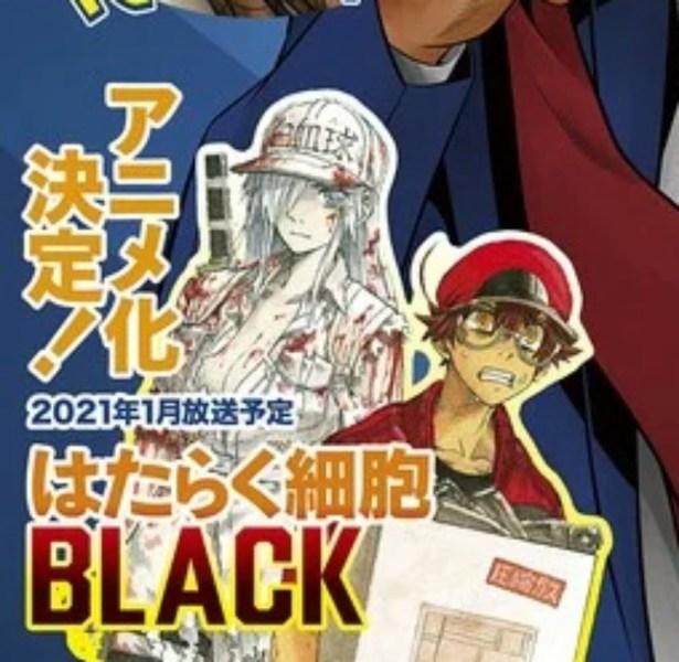 Anime TV Cells at Work!! Pada Bulan Januari 2021 Dicantumkan Sebagai Adaptasi Dari Code Black 1