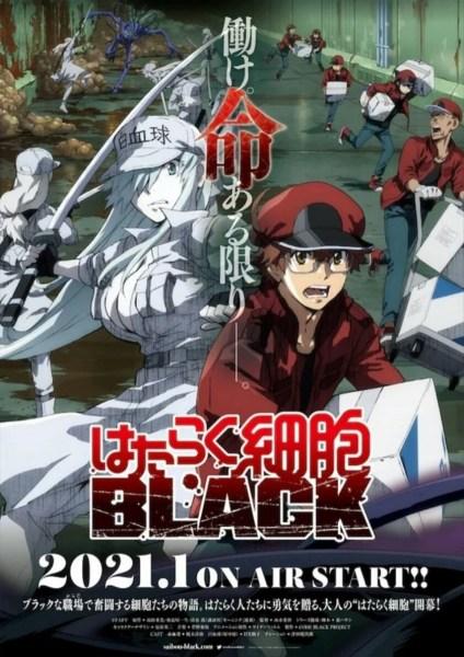 Video Promosi Lengkap Pertama untuk Anime TV Cells at Work! Code Black Ungkap Seiyuu dan Staf Lainnya 1