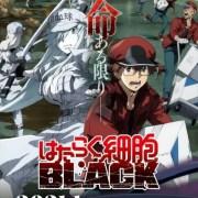 Video Promosi Lengkap Pertama untuk Anime TV Cells at Work! Code Black Ungkap Seiyuu dan Staf Lainnya 16