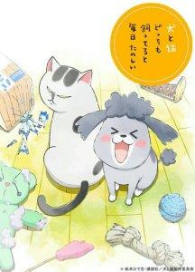 Video Promosi Kedua Anime Inu to Neko Docchimo Katteru to Mainichi Tanoshii Ungkap Staf Lainnya, Lagu Tema dari Ayaka Ohashi, Tanggal Debut Animenya 2