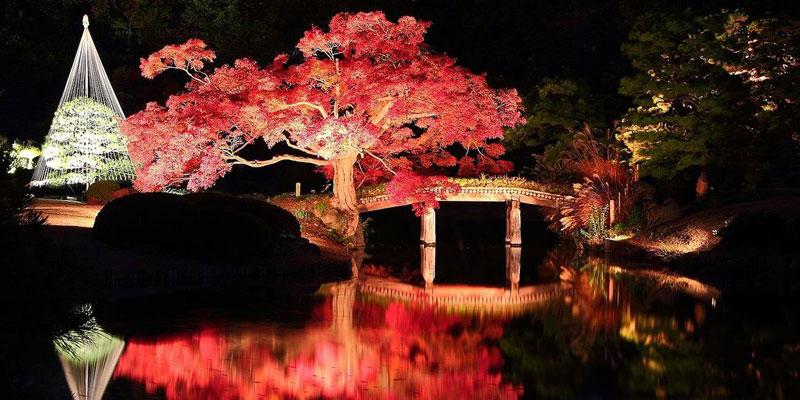 Taman Indah Rikuguen dan Furukawa yang Dilapisi Sejarah di Tokyo 3
