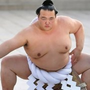 olahraga sumo