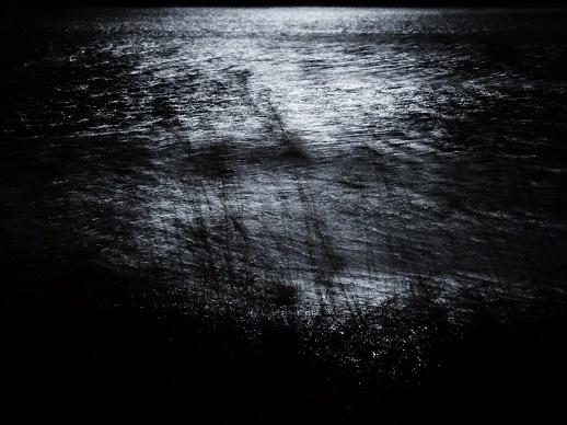 Zwart-wit foto van het meer. Foto Loes.