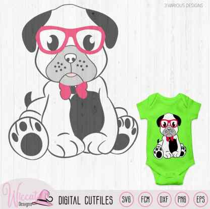 Hipster boy pug with glasses