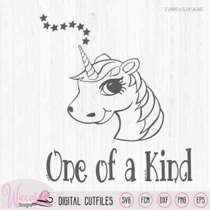 Unicorn one of a kind