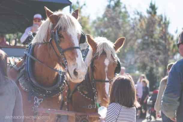 Prairie Pines Christmas Tree Farm horse drawn wagon rides