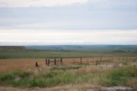 Scenic view of a western Kansas fenceline and bluff in the distance