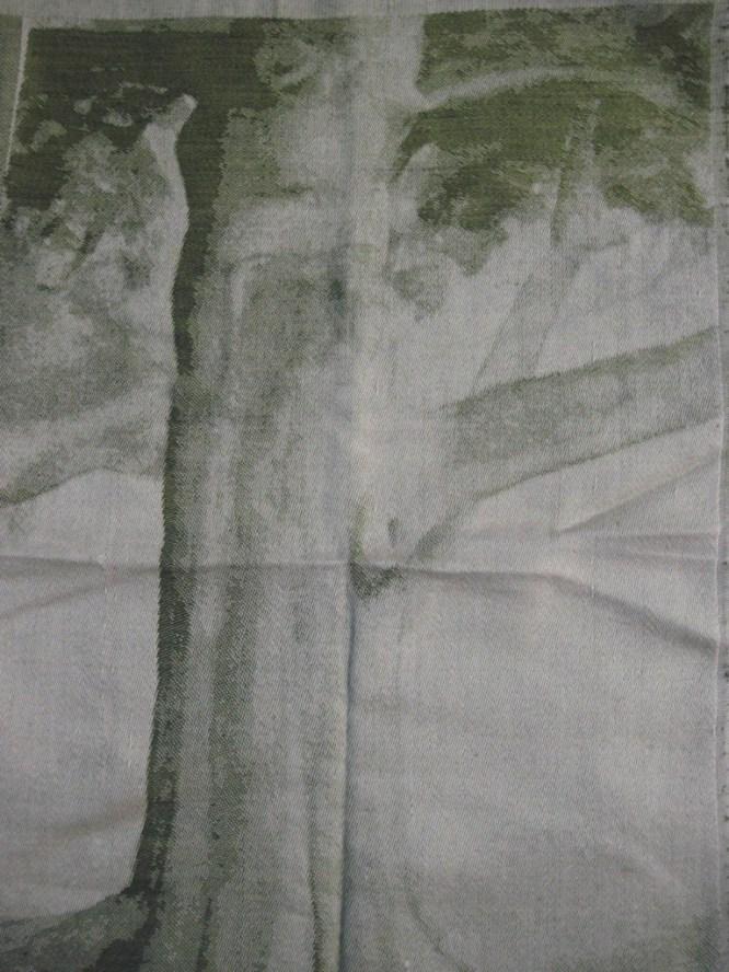 tree_front