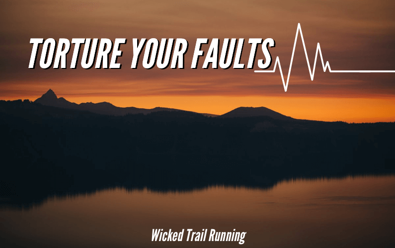 Torture Your Faults