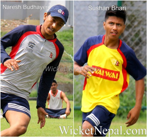 cricket association of nepal
